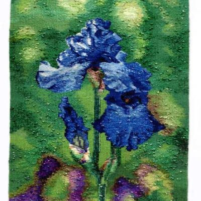 Blue Iris    Hand dyed and Woven
